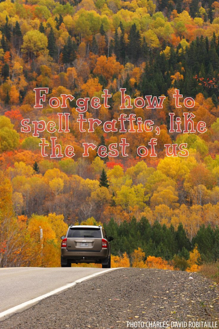 Reason #120 to visit #Saguenay_Lac region : forget how to spell traffic, like the rest of us. #175reasons #fall #travel