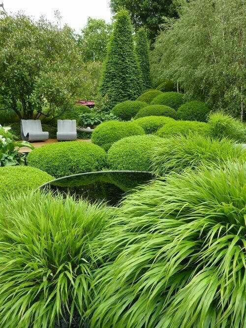 Evergreen Garden, Topiary Garden, Garden Features, Ornamental Grasses, Outdoor  Gardens, Water Feature, Garden Design, Outdoor Showers, Garden Ideas