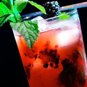 berry mojitos....mmm....best ive had was at jb's on the beach (deerfield beach, fl)...and dada's (delray beach,fl)