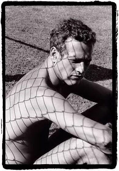 Paul Newman from the Dennis Hopper collection: Paul Newman, Photos, But, Paulnewman, 1964, People, Photography, Dennis Hopper, Dennishopper