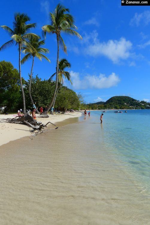 La Pointe Marin, une des très jolies plages du bourg de Sainte-Anne au sud de la Martinique.