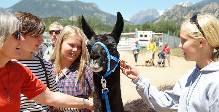 So many things to do in Estes Park in August! #EstesPark #SummerVacation