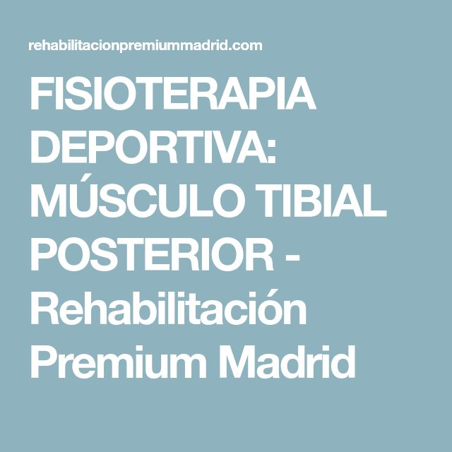 FISIOTERAPIA DEPORTIVA: MÚSCULO TIBIAL POSTERIOR - Rehabilitación Premium Madrid