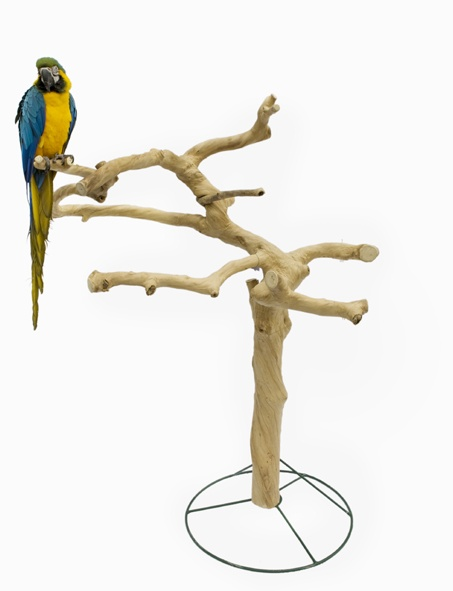 Java Tree Only    Para integrar en jardines y aviarios. Árbol Java sin base de madera. Se puede incrustrar sobre la tierra o cemento o bien utilizar la base de metal Tree Mount.