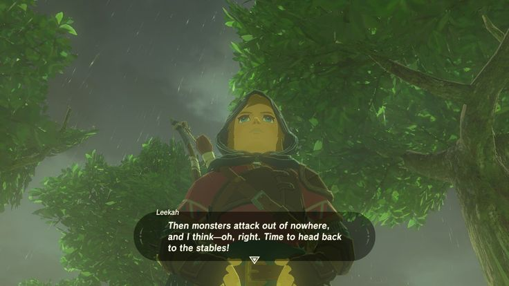 Link looks like amy schumer from this angle