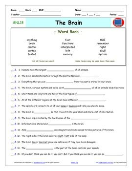 """Bill Nye - The Brain  Worksheet, Answer Sheet, and Two Quizzes for Bill Nye - The Science Guy** Videos         ***** Preview is an full sample of a similar video.***** Differentiated Video Guides, Worksheets and Quizzes for Bill Nye - The Science Guy** Videos.This package includes eleven pages:      1- An Answer Key     2- A """"Word Bank"""" Video Guide     3- A """"Word Bank"""" Reusable Quiz     4- A """"Word Bank Individual Quiz     5- A Fill-In-The-Blank Video Guide     6- A Fill-In-The-Blank…"""