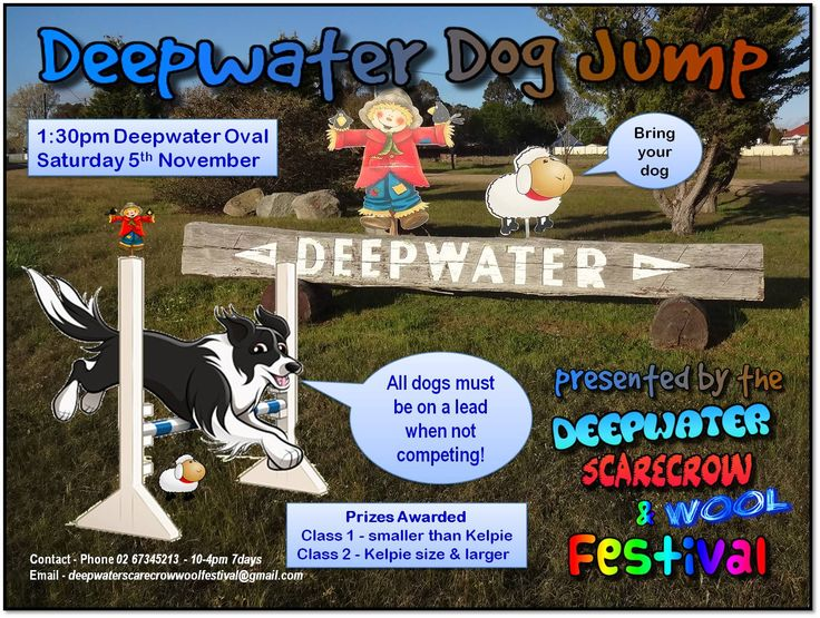New to the 2016 festival - the Deepwater Dog Jump - woof woof