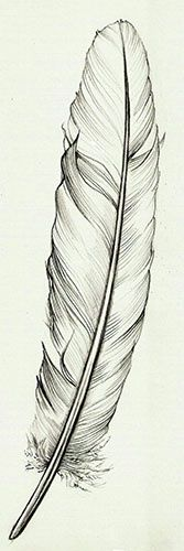 This is it! My feather tattoo design! If you're going to repin please follow me!