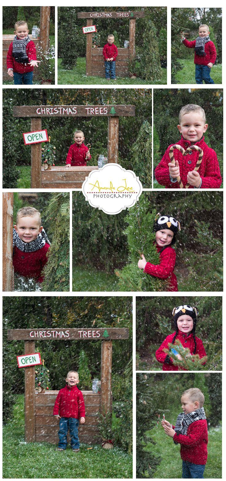 Creative Christmas Shoots for kids. Christmas Tree Sale.