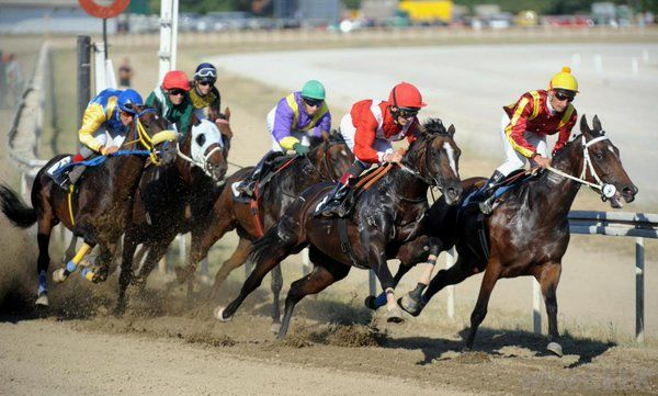 Approaching the Horse Racing Tipsters for Long Term Profits