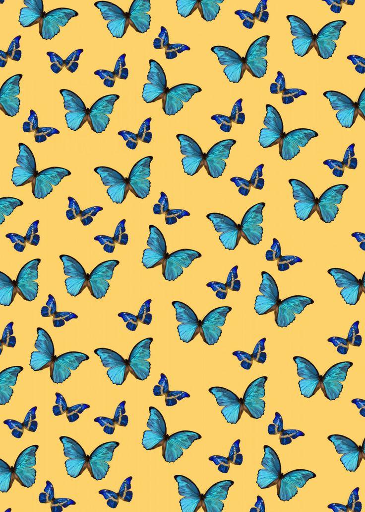 'Blue Yellow Butterfly 1' Metal Poster Print - Anita's ...