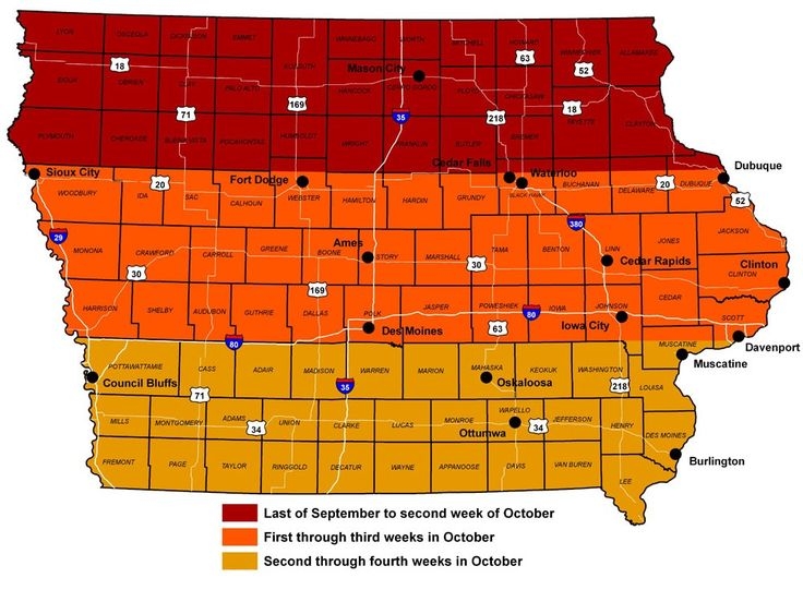 Best Fall In Iowa Images On Pinterest Iowa Fall And Council - Us fall color map