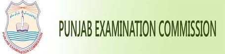 PEC Gujranwala Board 8th Class Result Sialkot Hafizabad