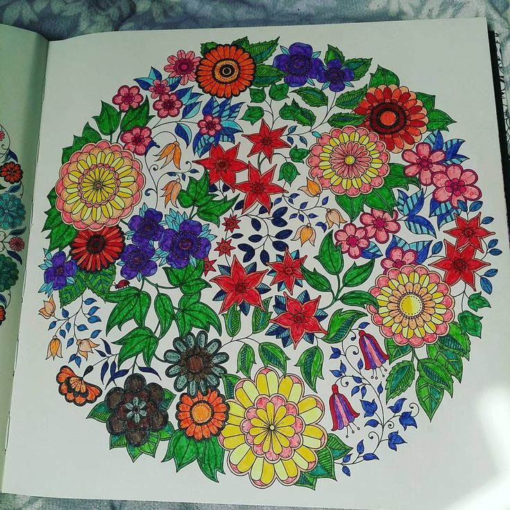 The Secret Garden Colouring Book This Is Page 4