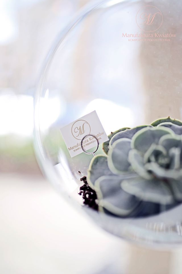 #flower #flowers #pink #white #green #roses #basket #compozition #elegant #style #love #flowerdesign #florist #flowershop #kwiat #kwiaty #roz #biel #roze #zielen #kompozycja #koszyk #elegancki #styl #miłość #kwiaciarnia #manufakturakwiatow