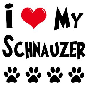 i love my Schnauzer.