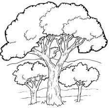 dessin d'arbre simple - Recherche Google   Coloriage arbre, Dessin arbre, Dessin nature