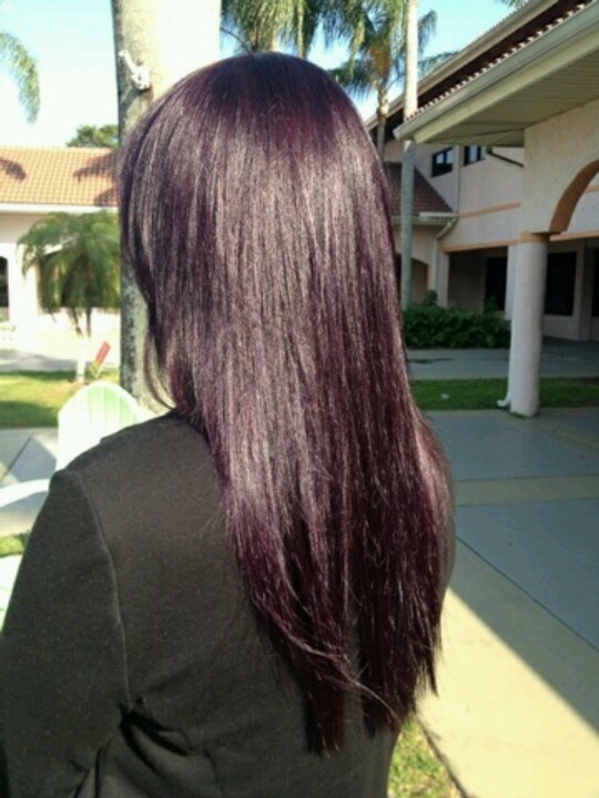 Eggplants hair color.. custom blended by yours truly! Hair by Emily Carroll