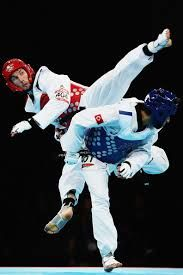 Taekwondo Flexibility - Google Search
