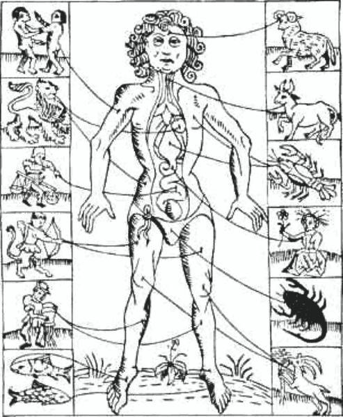 """Los términos y significados empleados en la astrología no son tan evidentes para la mayoría como para los que trabajan,  se sumergen y se fascinan navegando en la disciplina.    Con la idea primordial de """"democratizar"""" y proveer la mayor y más completa información  posible,  a continuación se encuentran detallados los signos del zodiaco, los planetas y las casas, de una forma esquemática y bastante clara suministrada por el programa astrológico de computación Janus 4.3."""
