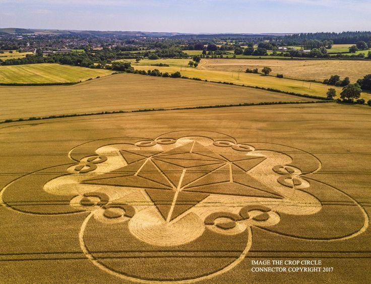 Cley Hill, Nr Warminster, Wiltshire. Informó el 18 de julio.