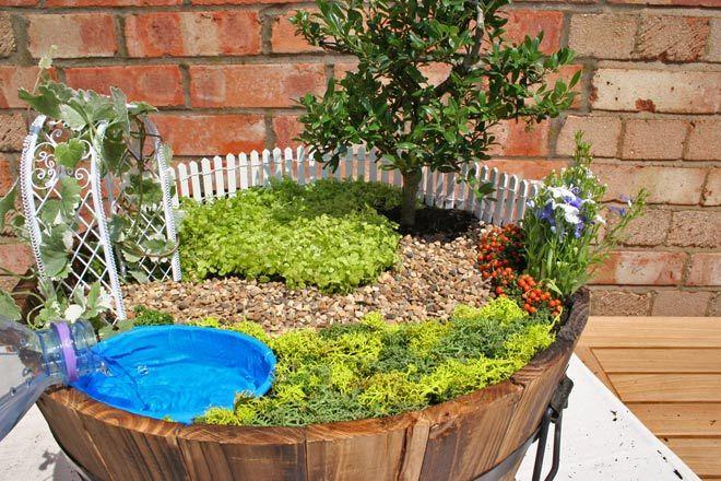 Pinterest the world s catalog of ideas for Mini garden pool