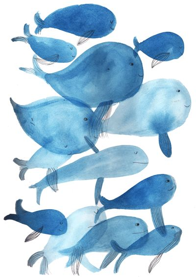 Marion Barraud's illustration/print.