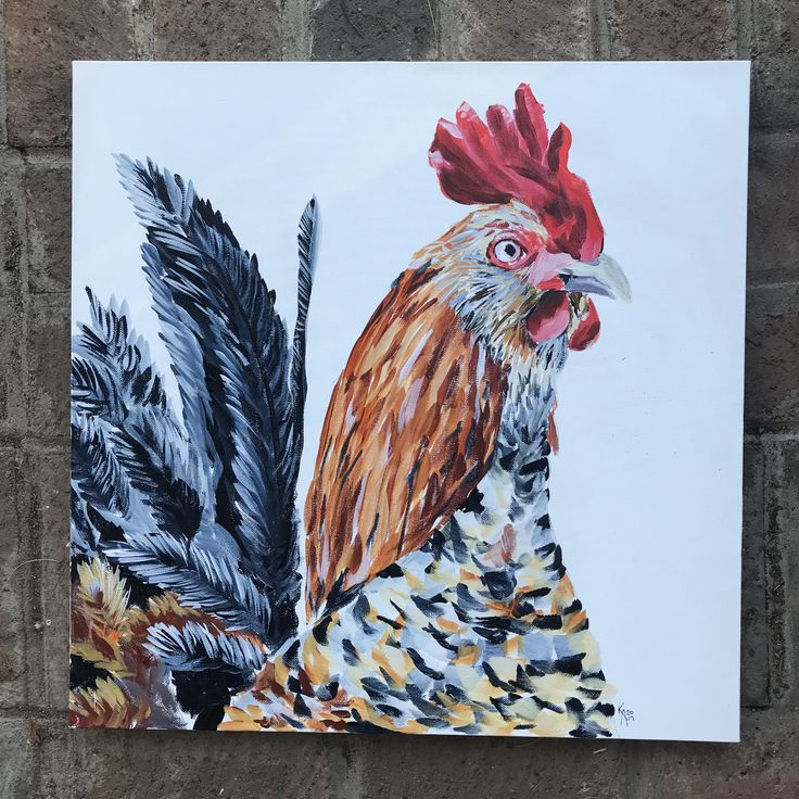 Rooster painting by Katie Anderson fine art. www.theblissfulwillow.com  Chicken, rooster, farmhouse art