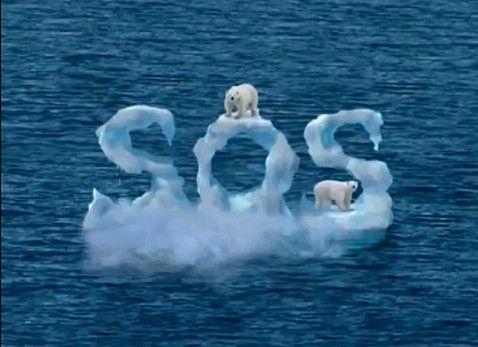 Essays on global warming and polar bears