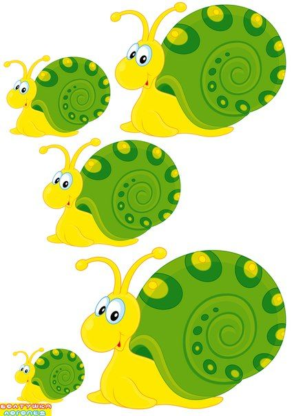 (2016-06) Ordn sneglene efter størrelse