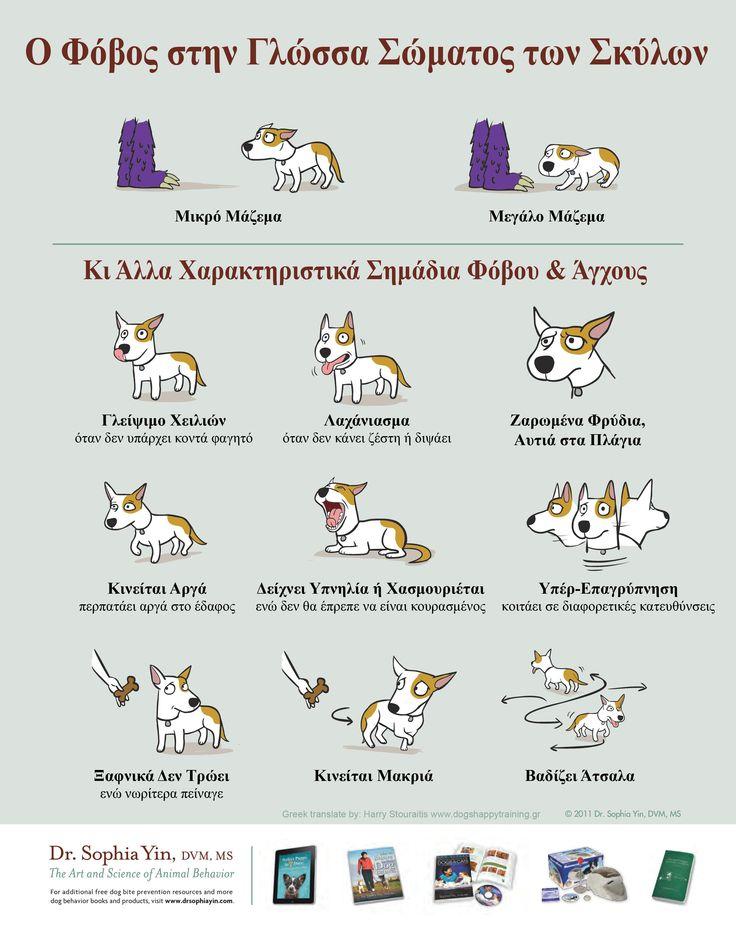 Word: Sophia Yin http://drsophiayin.com/ Drawing: Lili Chin http://www.doggiedrawings.net/ Greek translate: Harry Stouraitis www.dogshappytraining.gr  2011 Sophia Yin