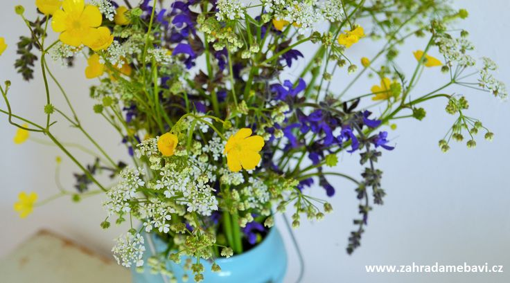Bunch of meadow flowers