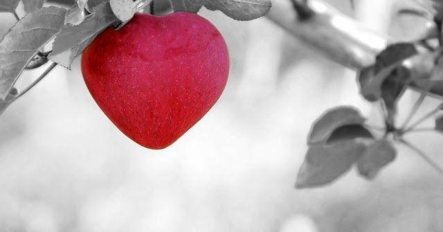 أجمل صور قلوب حب رومانسية للعشاق 2017 رومانسية صور قلوب وورود صور قلوب العاشقين لها عيون احلي صورة قلب جميلة ومعبرة لكل Bible Study Love The Lord Bible