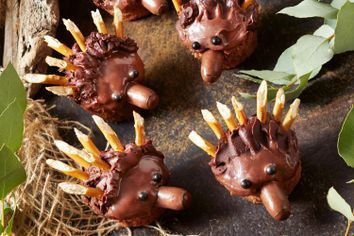 Chocolate echidna cupcakes