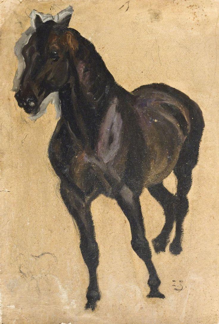 Zygmunt JÓZEFCZYK - STUDIUM KAREGO KONIA Olej, tektura; 51 x 36 cm