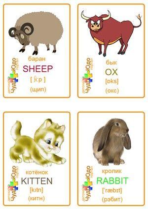 """Карточки с картинками """"Животные"""" на английском языке (2020 ..."""