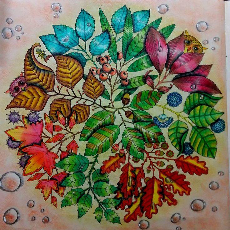 Mandala Owls Secret Garden De Corujas Jardim Secreto Johanna Basford