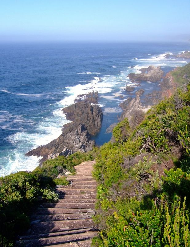 Otter Trail, Garden Route, South Africa Can't wait to see the view at the bottom of those stairs!