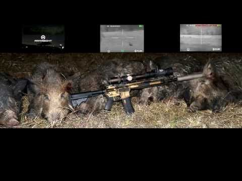 TEXAS HOG HUNTING WITH THERMAL
