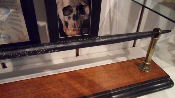 phineas gages skull and the tamping rod essay Phineas gage's famous injury thomas c neylan, md accident that involved a long metal rod called a tamping iron this rod was used to pack sand over an explosive charge tain the skull and tamping iron, which are now in the.