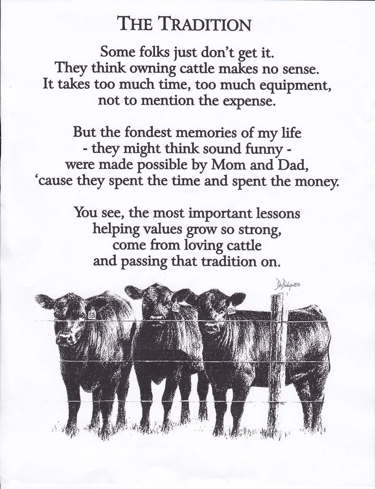 Love this!: Country Girls, My Life, Families Traditional, Farms Quotes, So True, Show Livestock Quotes, Country Life, Memories, Farms Life