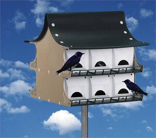 "Its name says it all: ""The Best Purple Martin House"". It offers housing for 12 Purple Martin Families! But that is just the beginning. Each comes with porches, Landing and Take-Off Rails, and Hinged D"