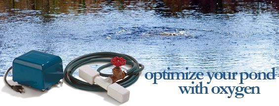 how to add oxygen to a pond