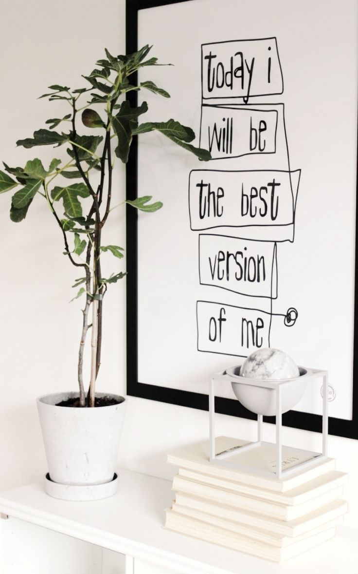 White walls, green plant, white accents, and black white worded wall art