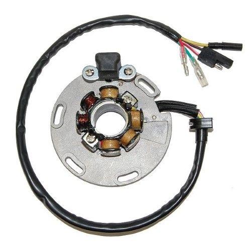 ElectroSport ESL452 Lighting Stator RM250, Silver | Products