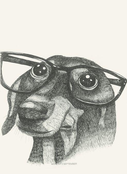 Mr Buddy #animals#buddy#dog#glasses#elegant https://flic.kr/p/D8pLDz