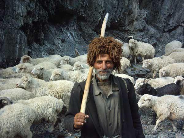 shepherd. Tusheti, Georgia