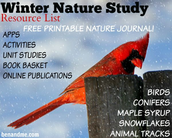 Winter Nature Study Resource List with FREE Nature Study Journal