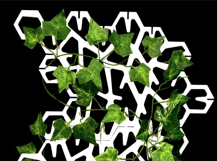 Grow a miniature green wall at home with the IVY planter