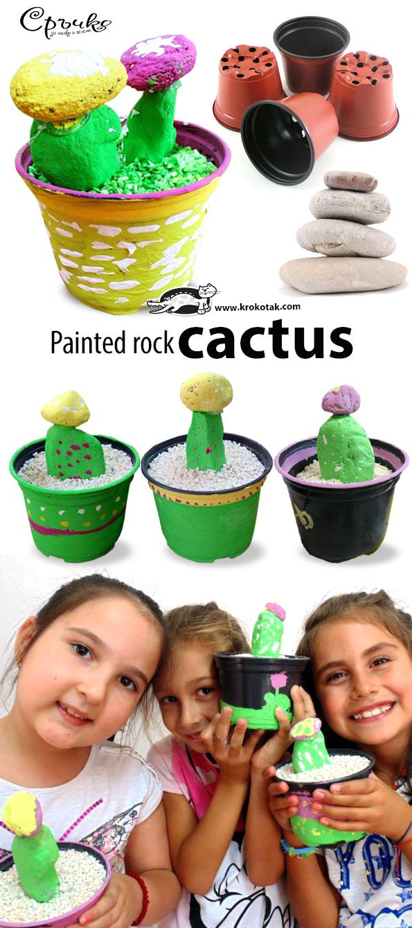 Colored Pebble Cactus